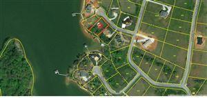 Tiny photo for 105 Grand Harbor Point, Rockwood, TN 37854 (MLS # 1098042)