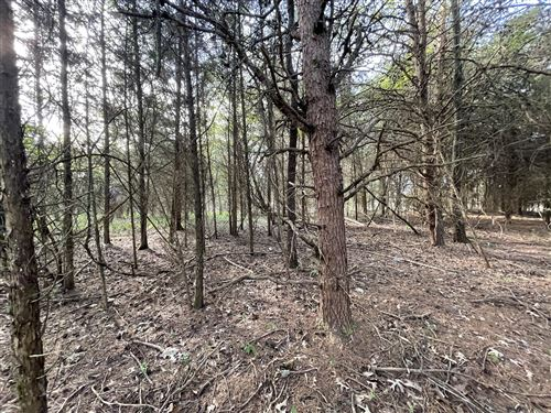 Photo of Lot 15 Gohi Trail, Vonore, TN 37885 (MLS # 1149049)