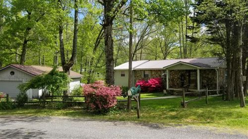 Photo of 201 Diane Drive, Spring City, TN 37381 (MLS # 1150075)