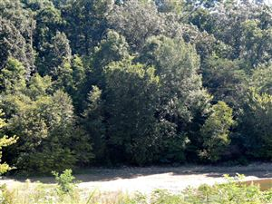 Photo of Lot 4 Ernie Roberts Road, Rutledge, TN 37861 (MLS # 1093081)
