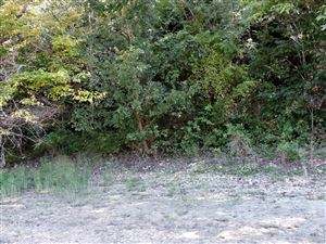 Tiny photo for Lot 4 Ernie Roberts Road, Rutledge, TN 37861 (MLS # 1093081)