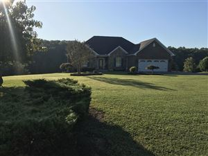 Photo of 330 Back Nine Drive, Baneberry, TN 37890 (MLS # 1093088)
