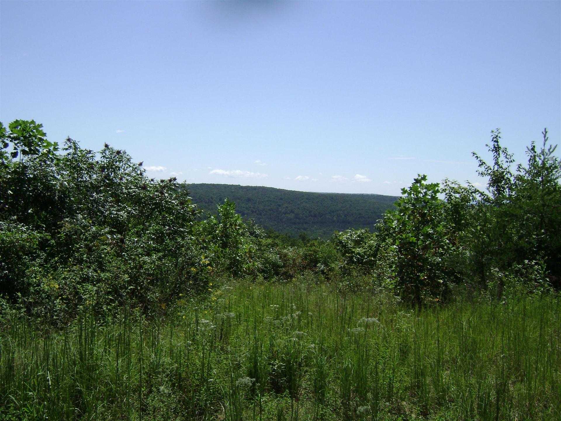 Photo of Bear Pen Rd, Whitwell, TN 37397 (MLS # 1140093)