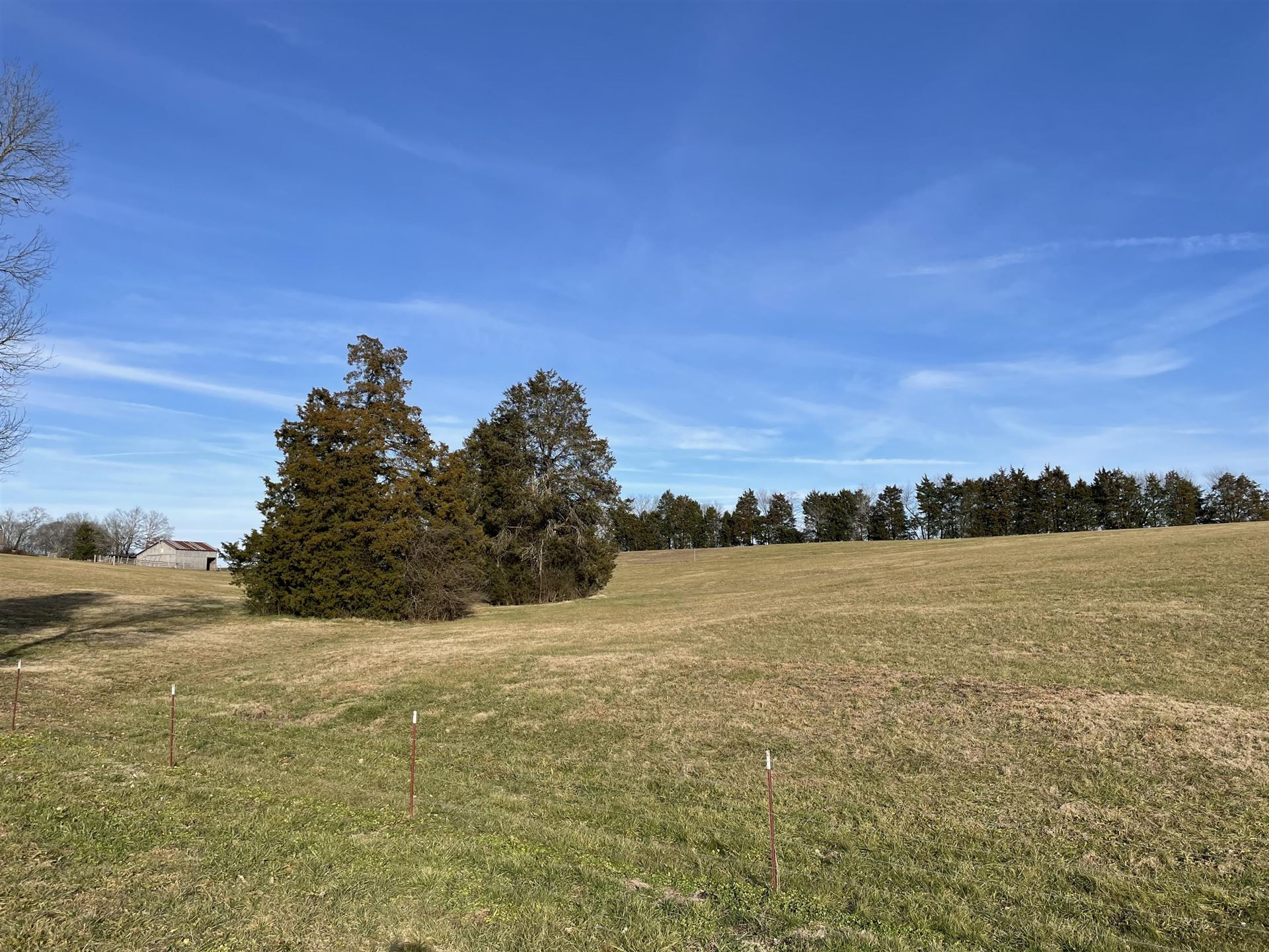 Photo of county road 727, Riceville, TN 37370 (MLS # 1140098)
