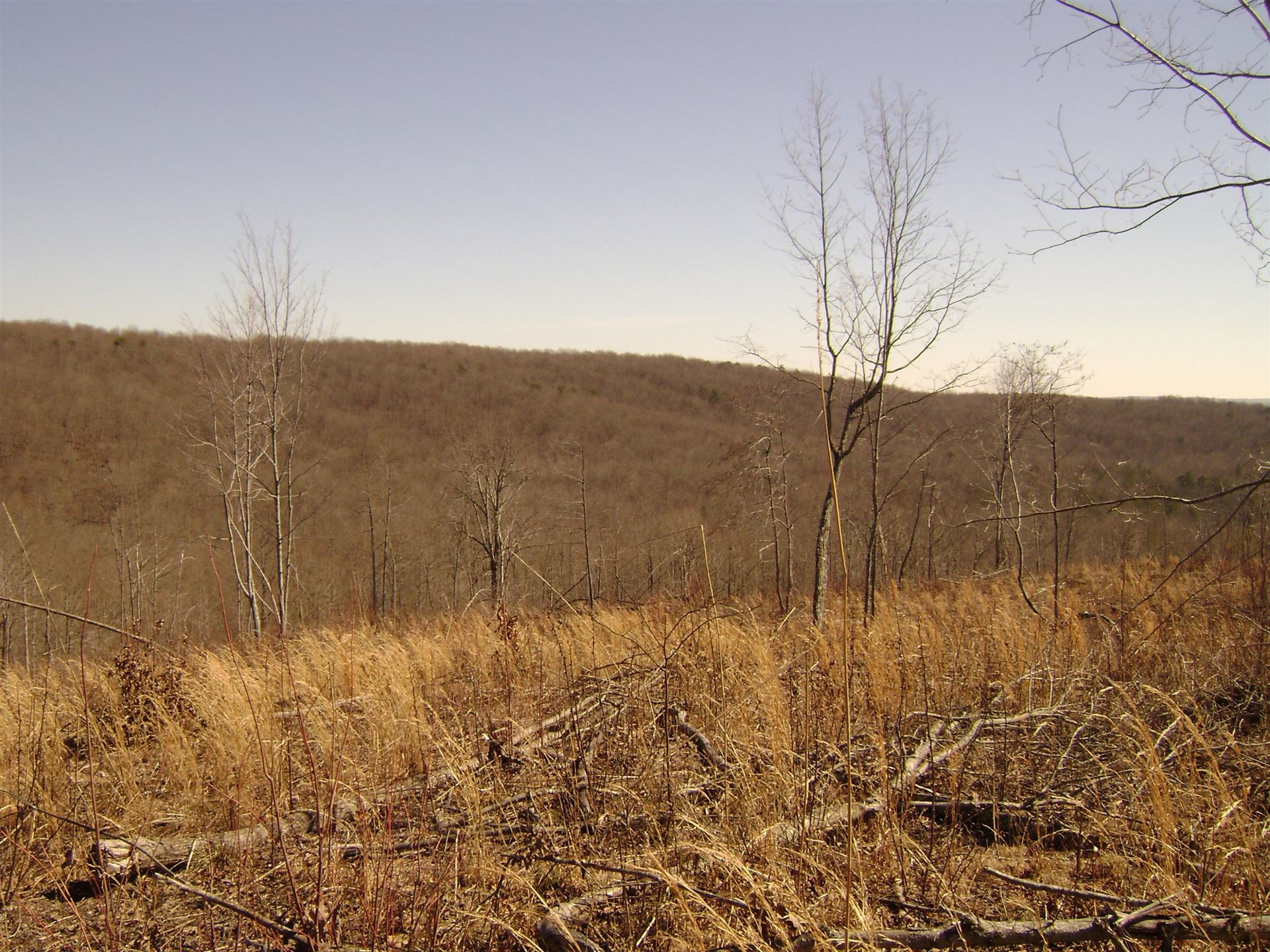 Photo of Off Daus Mnt./County Line Rd, Dunlap, TN 37327 (MLS # 1140102)