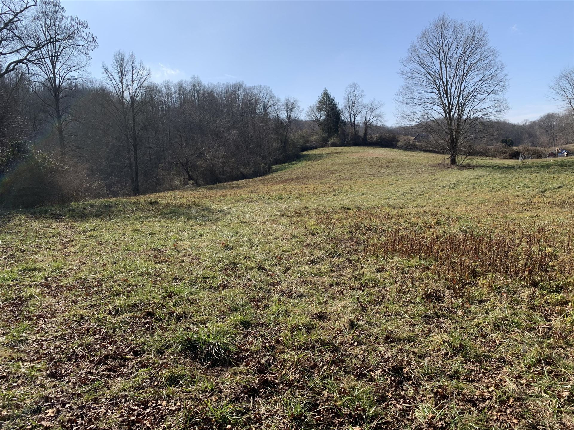 Photo of 240 McMurray Rd, Cumberland Gap, TN 37724 (MLS # 1140105)