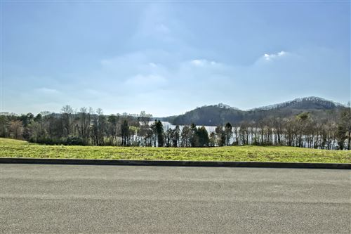 Photo of 199 Bay Pointe Rd, Vonore, TN 37885 (MLS # 1107116)