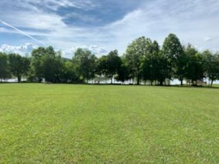 Tiny photo for 272 W Shore Drive, Rockwood, TN 37854 (MLS # 1152129)