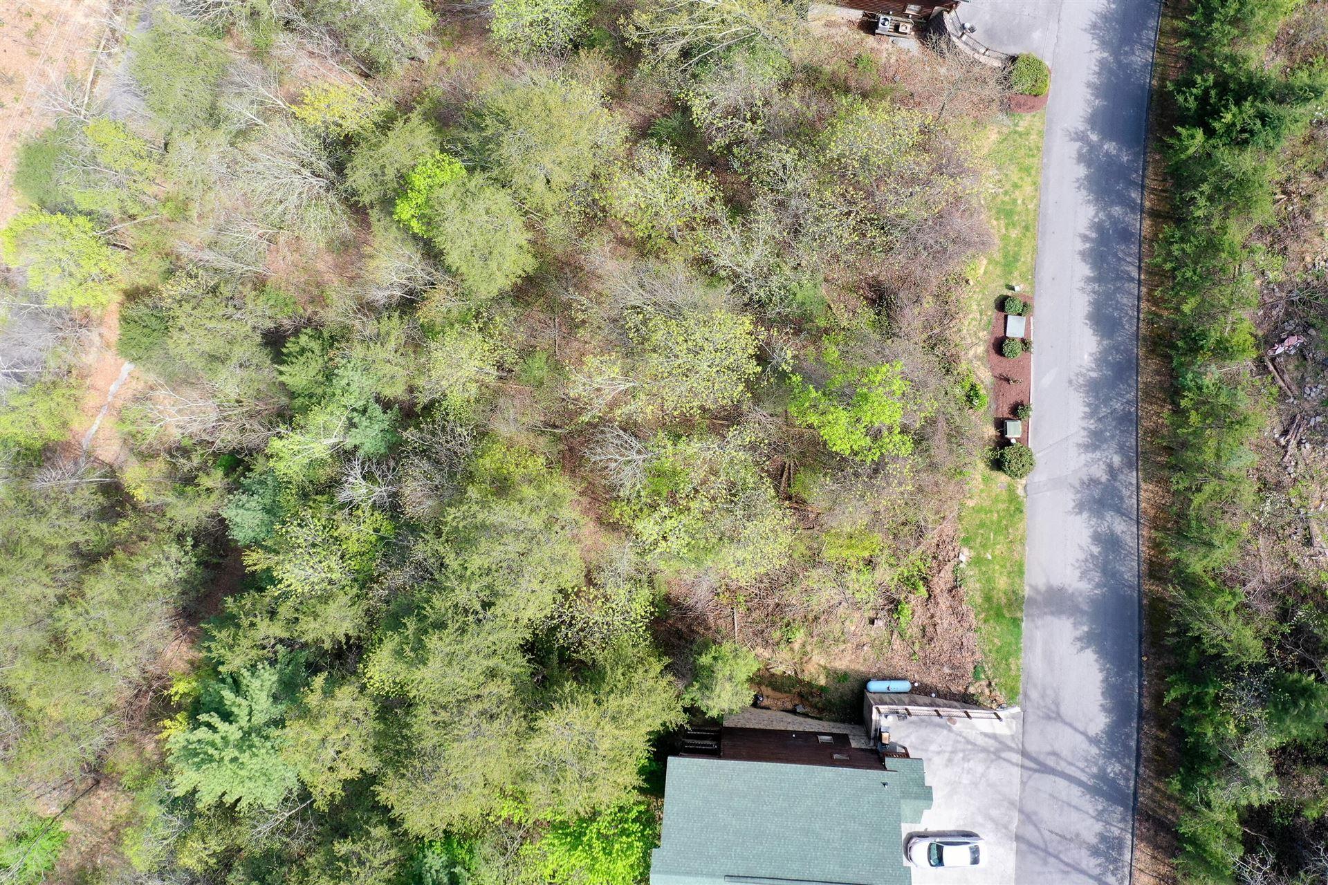 Photo of 4r Black Bear Cub Way, Sevierville, TN 37862 (MLS # 1149131)