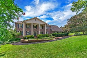 Photo of 11020 Calloway View Drive, Knoxville, TN 37934 (MLS # 1093151)