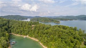 Photo of Lot 245 Lakeview Drive, Sharps Chapel, TN 37866 (MLS # 1094156)