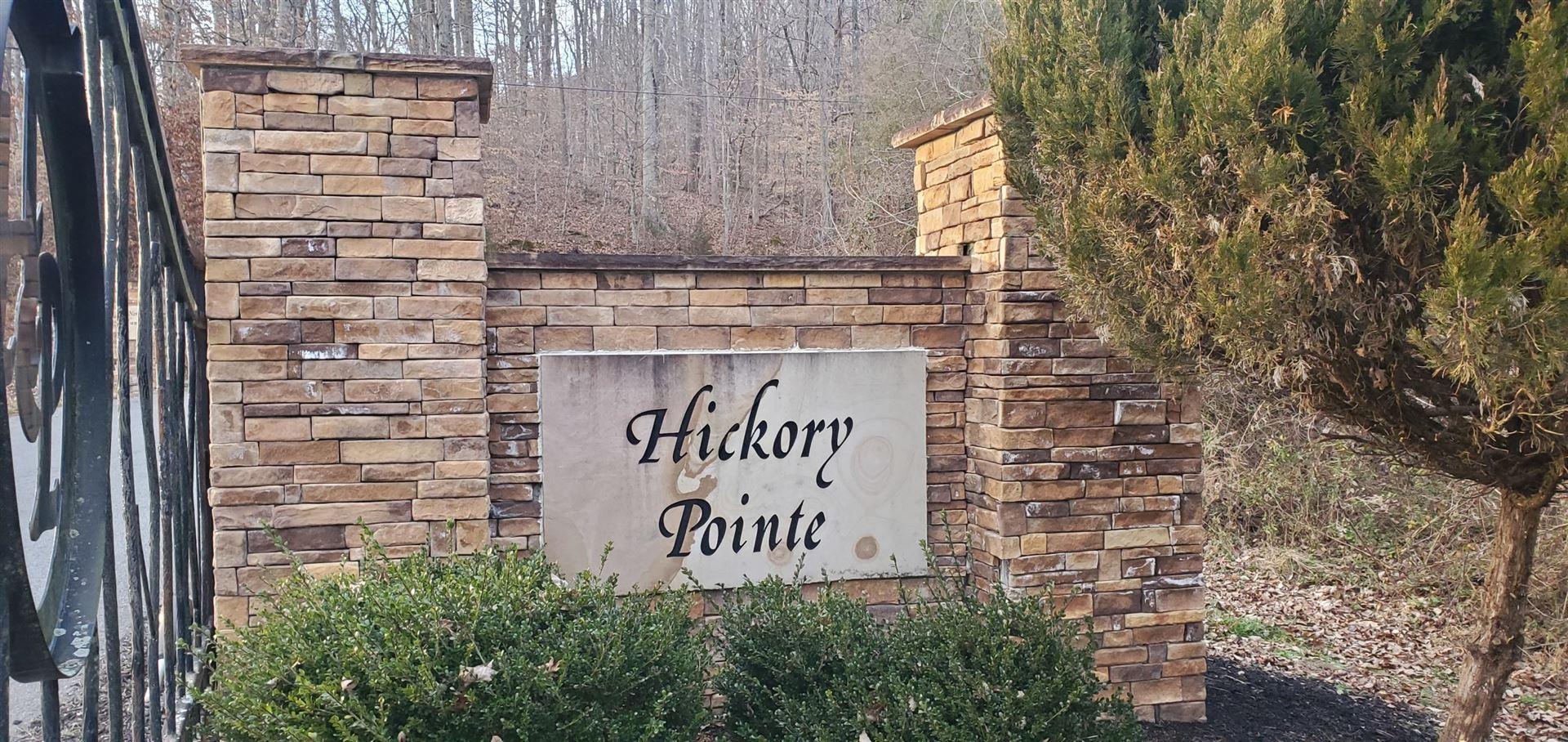 Photo of Lot 13 Hickory Pointe, Maynardville, TN 37807 (MLS # 1140160)