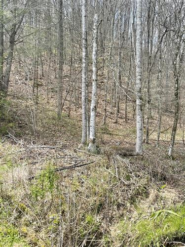 Photo of Lot 4 Rule Way, Sevierville, TN 37876 (MLS # 1149163)