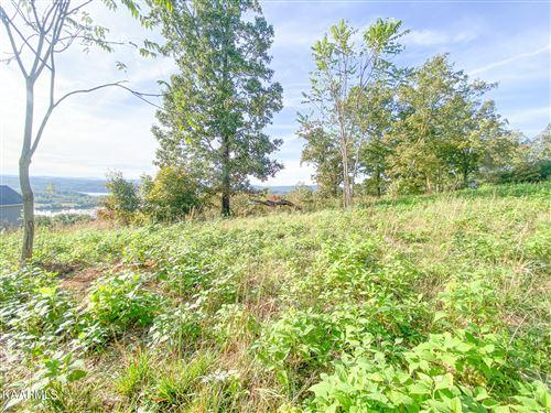 Photo of 554 Grande Vista Drive, Rockwood, TN 37854 (MLS # 1171172)