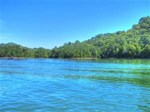 Photo of Lot 34 Mountain Shores Drive, New Tazewell, TN 37825 (MLS # 1032196)