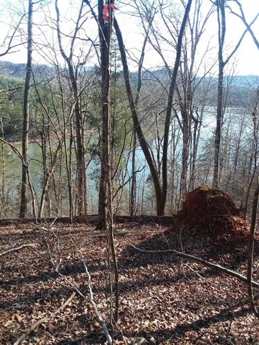 Photo of 538 Scenic River Rd, Madisonville, TN 37354 (MLS # 1140199)
