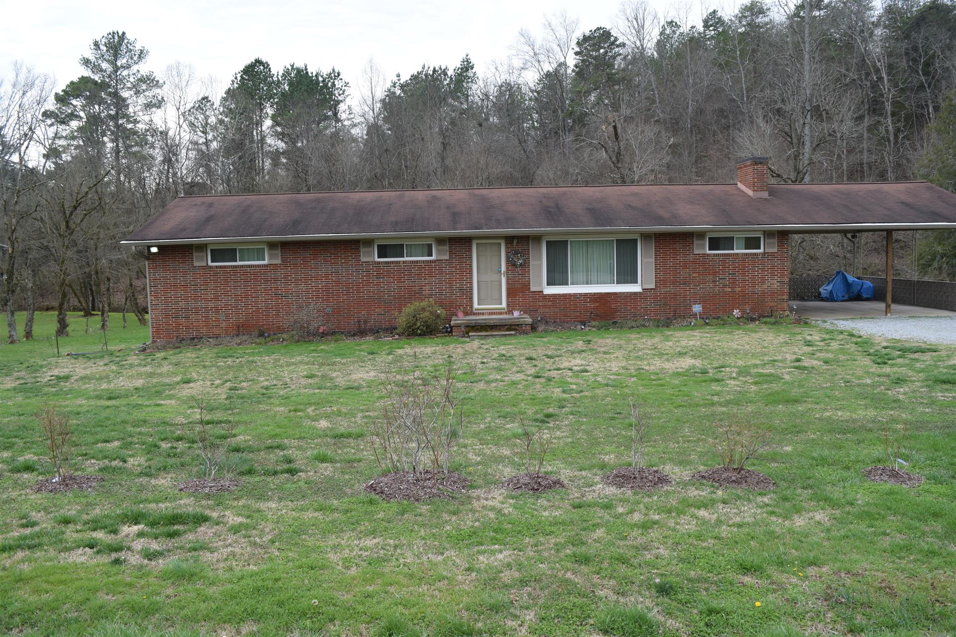 Photo of 1024 Kimberlin Heights Rd, Knoxville, TN 37920 (MLS # 1108231)