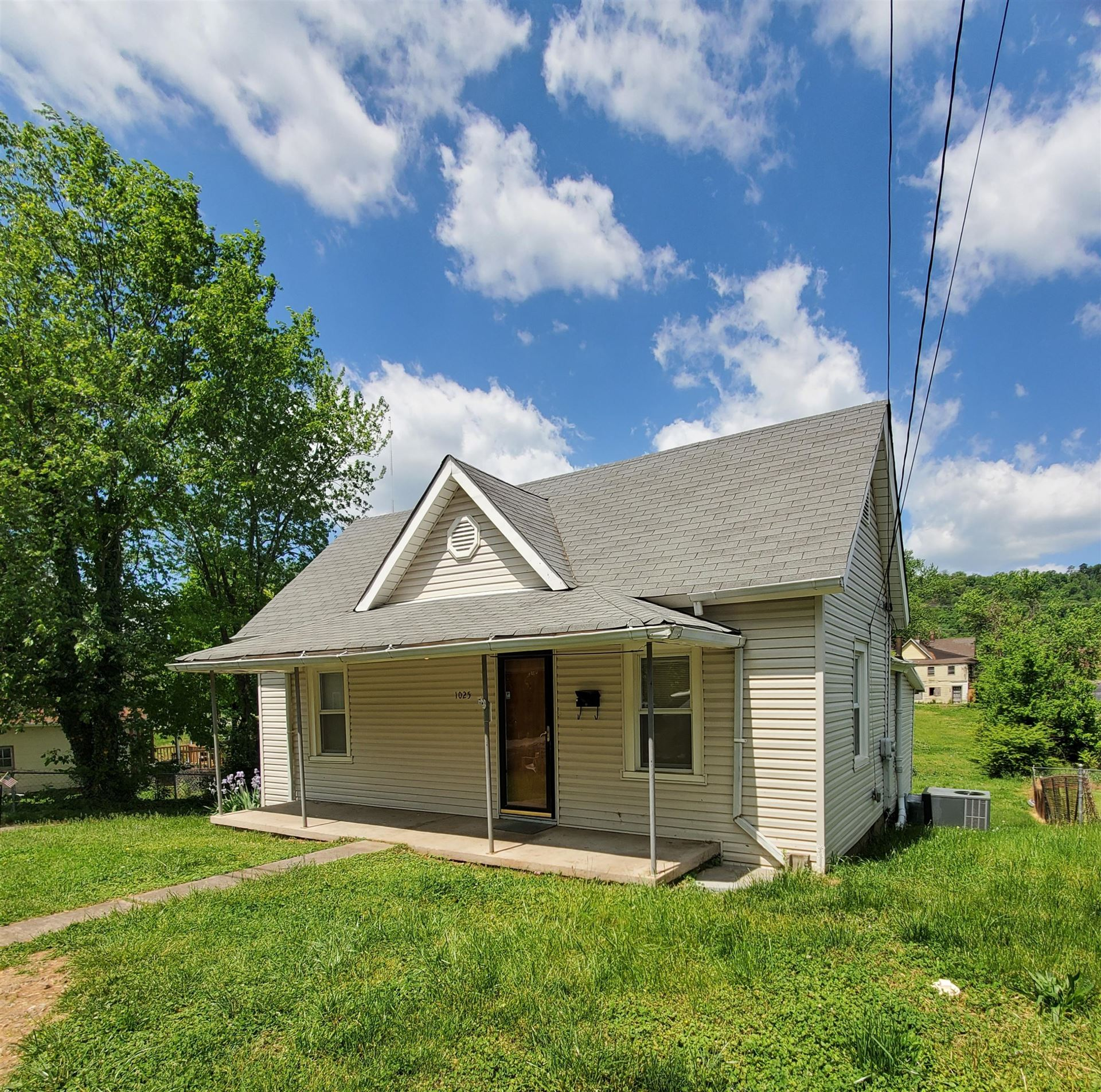 Photo of 1025 Katherine Ave, Knoxville, TN 37921 (MLS # 1151236)