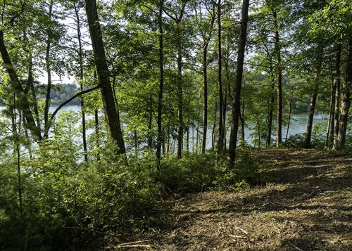 Photo of Lot 13 Cypress Drive, Dandridge, TN 37725 (MLS # 1152238)