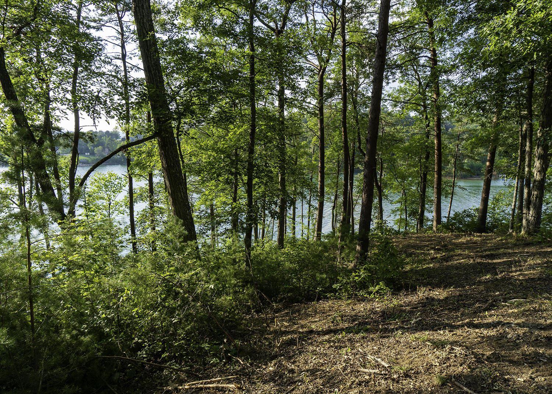 Photo for Lot 13 Cypress Drive, Dandridge, TN 37725 (MLS # 1152238)