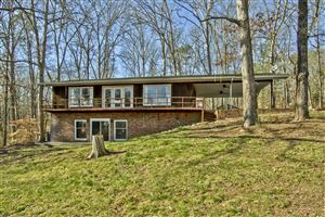 Photo of 140 Emerald Cove Lane, Rockwood, TN 37854 (MLS # 1071239)