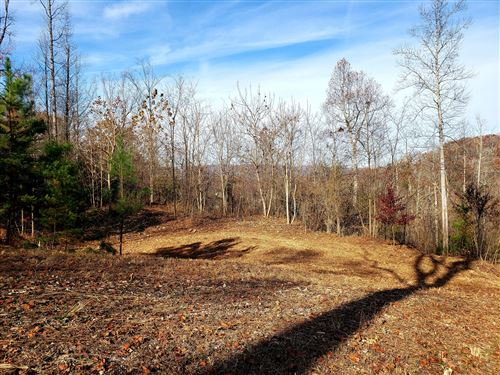 Photo of Lot 18 Lakemont Lane, Caryville, TN 37714 (MLS # 1101239)