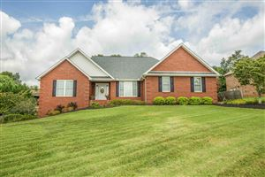 Photo of 7819 Scenic View Drive, Knoxville, TN 37938 (MLS # 1092246)