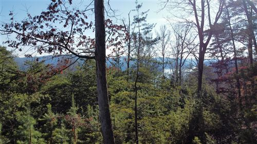 Tiny photo for lot 155 Emerald Point, Sharps Chapel, TN 37866 (MLS # 1139252)