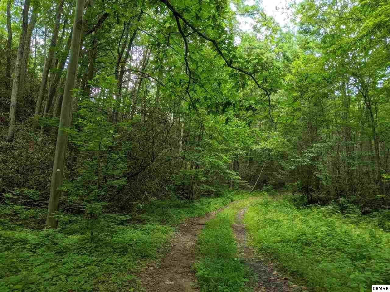Photo of Big Sycamore St, Sevierville, TN 37862 (MLS # 1149260)