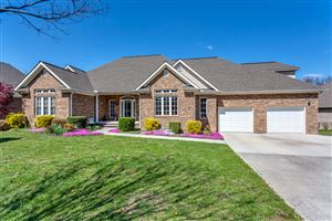 Photo of 272 Paradise Lane, Jacksboro, TN 37757 (MLS # 1059277)