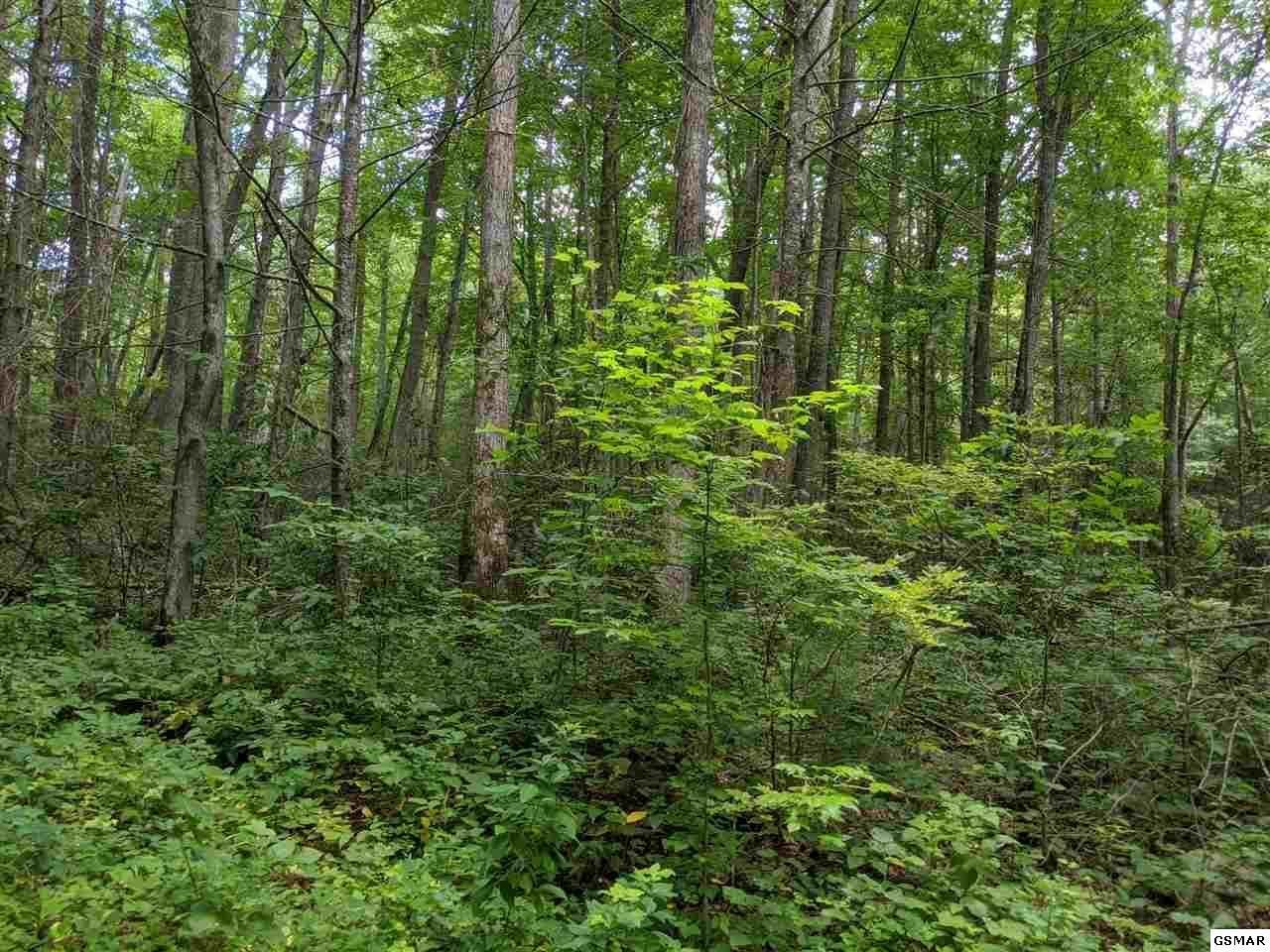 Photo of Big Sycamore St, Sevierville, TN 37862 (MLS # 1149279)