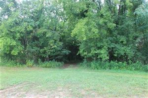 Tiny photo for Lot 1 Trotline Rd, Dandridge, TN 37725 (MLS # 1100283)