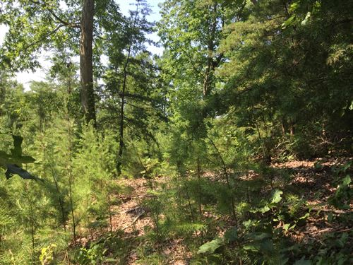 Photo of L-156  Lakeview Dr., Sharps Chapel, TN 37866 (MLS # 1122283)