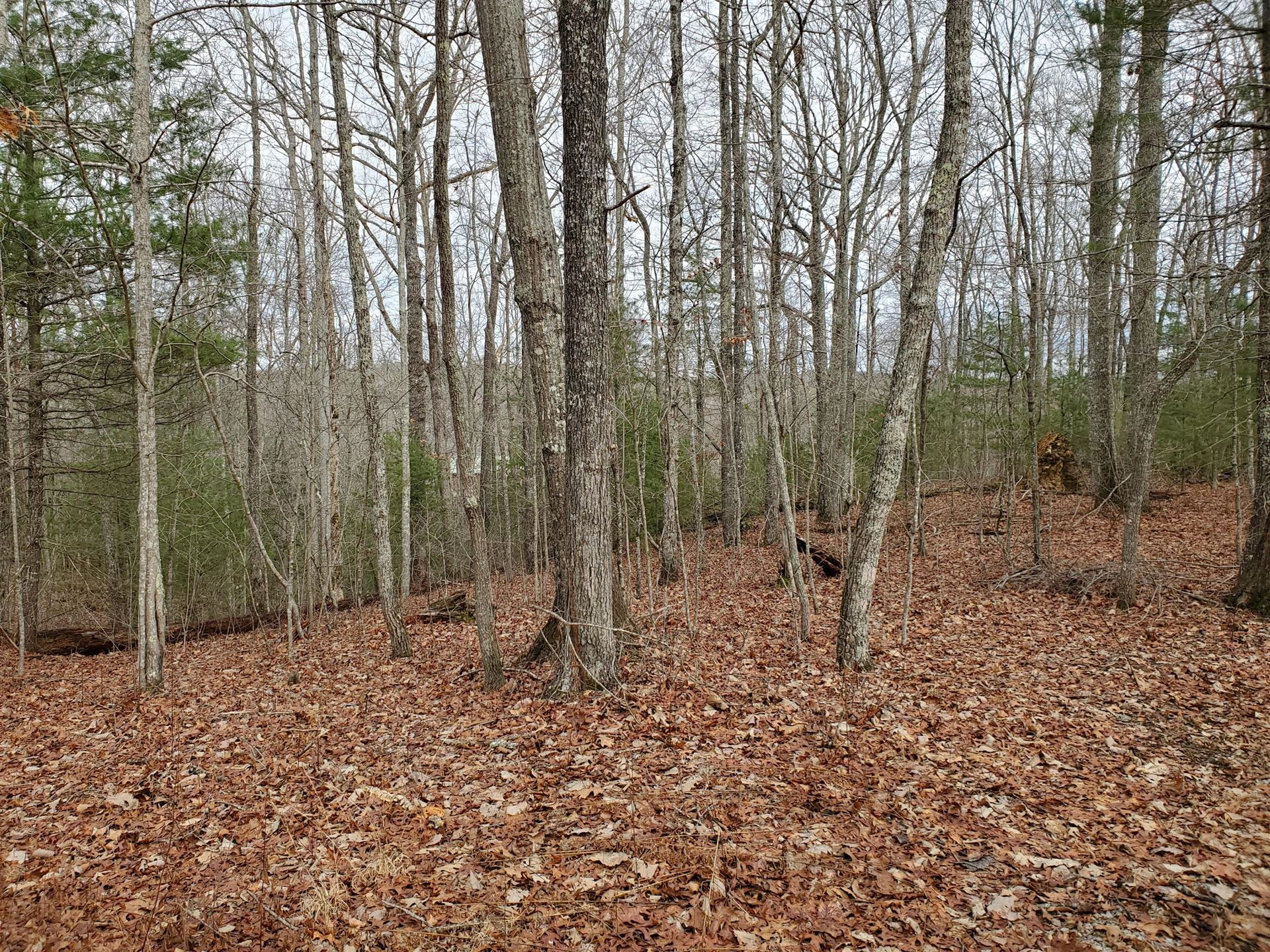 Photo of Yellow Nugget Rd, Tellico Plains, TN 37385 (MLS # 1140283)