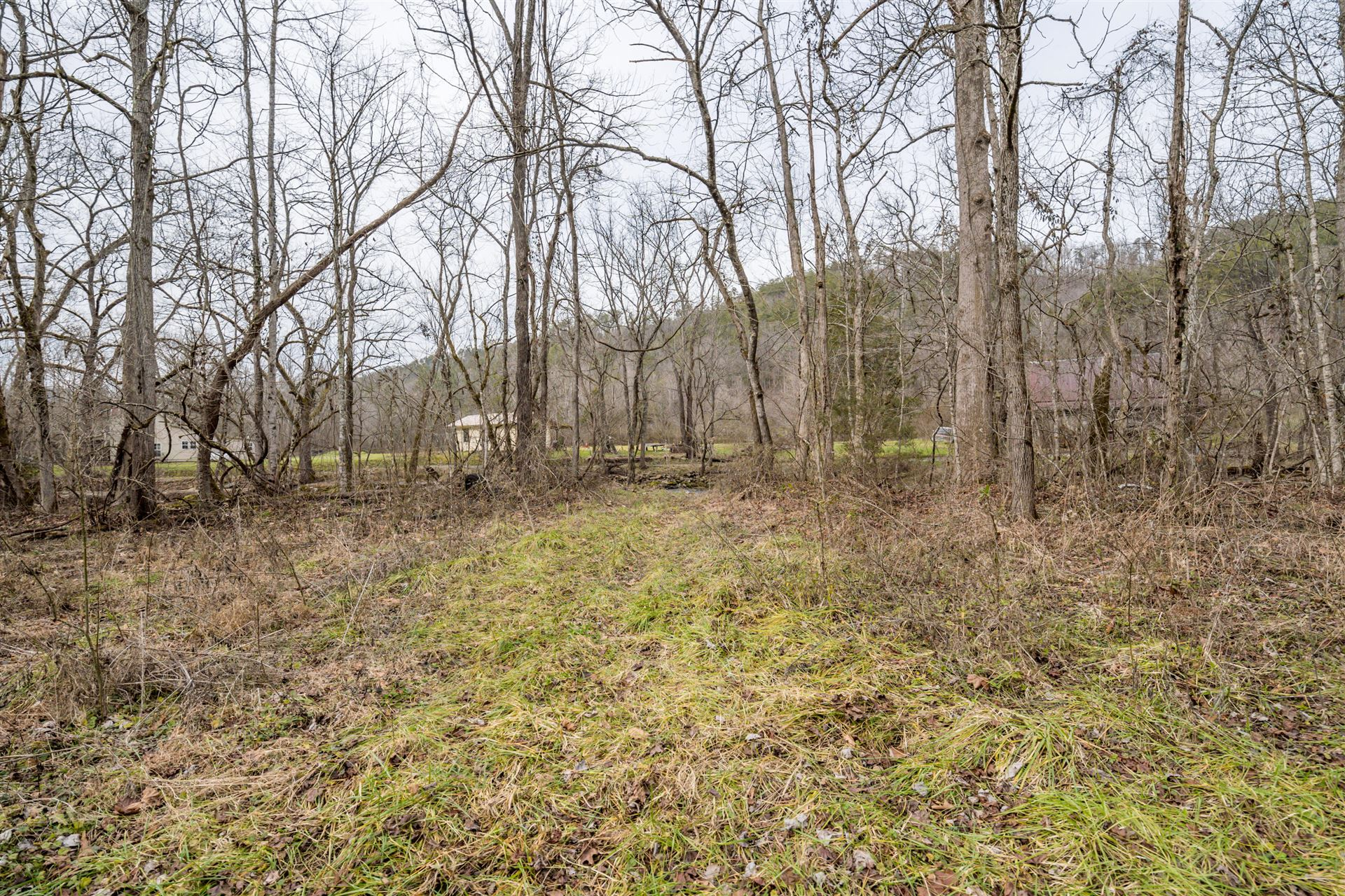 Photo of 1392 Rocky Flats Rd, Cosby, TN 37722 (MLS # 1140285)