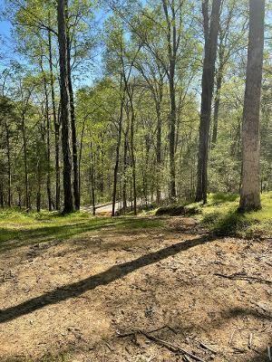 Photo of 1860 King Estates Rd, Sevierville, TN 37876 (MLS # 1149286)