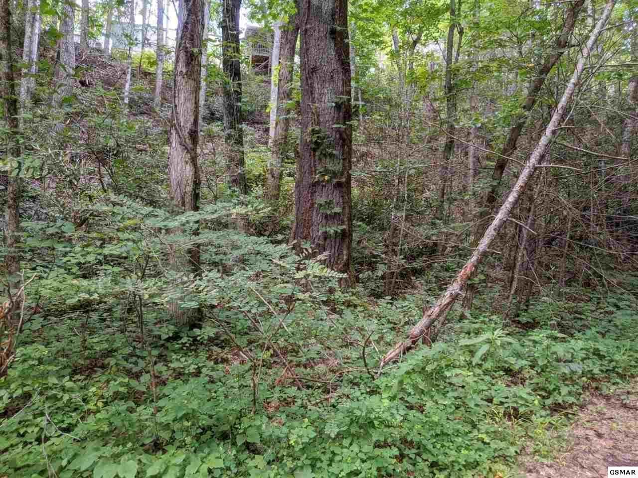 Photo of Big Sycamore St, Sevierville, TN 37862 (MLS # 1149287)