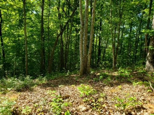 Photo of 1998 Rock Springs Rd, Celina, TN 38551 (MLS # 1152308)