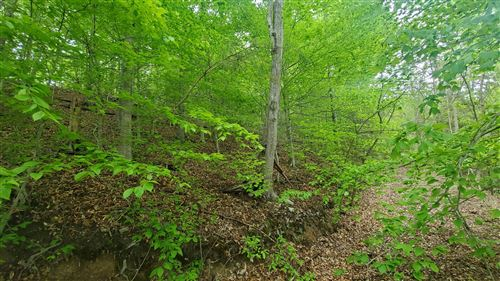 Tiny photo for 396 Creekside Drive, New Tazewell, TN 37825 (MLS # 1152310)