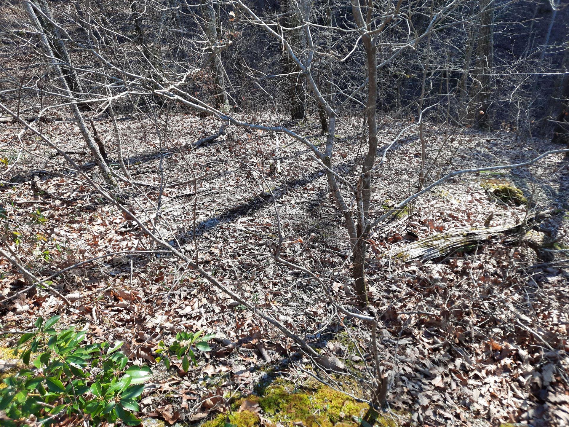 Photo of Ridgeland Circle, Sevierville, TN 37862 (MLS # 1140315)