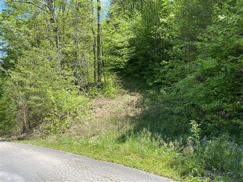Photo of Little Cove Road, Sevierville, TN 37876 (MLS # 1152317)