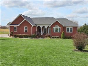 Photo of 2227 Wild Pear Tr, Dandridge, TN 37725 (MLS # 1097320)