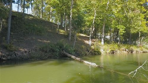 Tiny photo for Lot 38 Waterfront Way, Ten Mile, TN 37880 (MLS # 1133333)