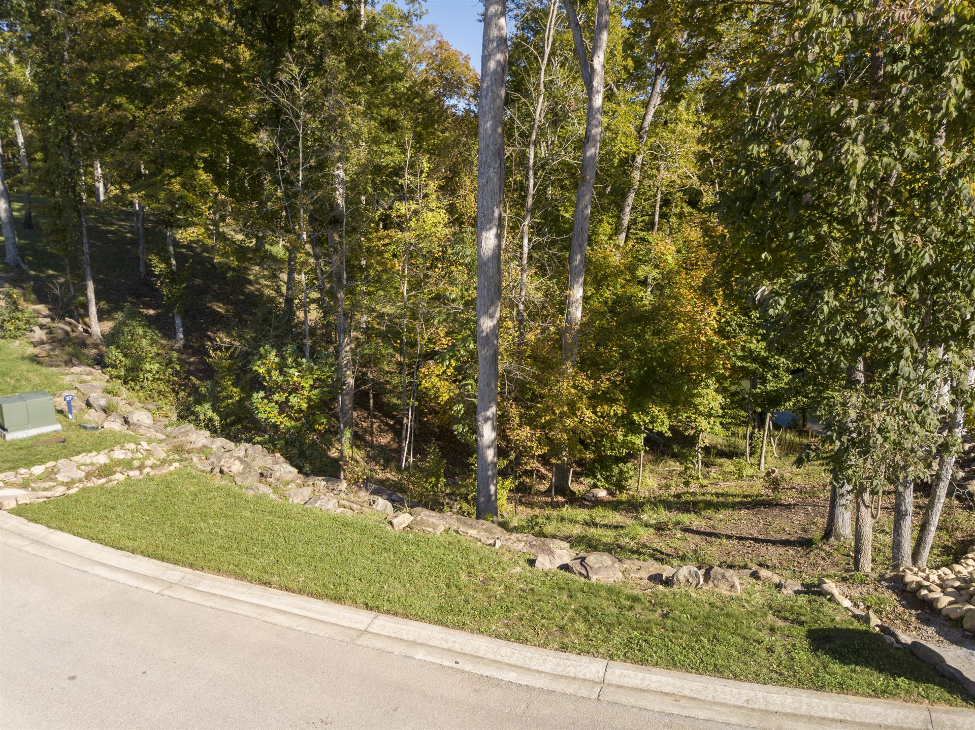 Photo for Lot 38 Waterfront Way, Ten Mile, TN 37880 (MLS # 1133333)