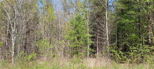 Photo of Smithfield Road Rd, Tellico Plains, TN 37385 (MLS # 1149340)