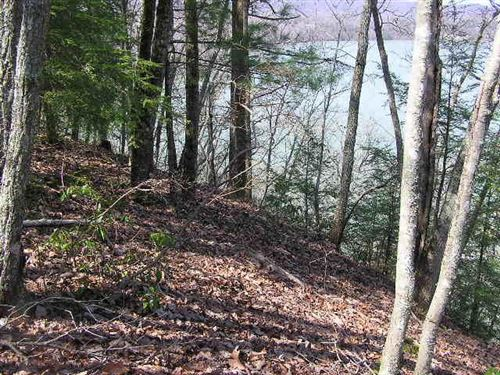 Tiny photo for Rockview Dr, Spring City, TN 37381 (MLS # 1112343)