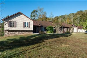 Photo of 153 Mount Olive Rd, Andersonville, TN 37705 (MLS # 1097352)