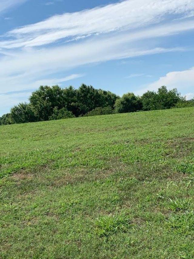 Photo for Lot 34 Wild Pear Trail Tr, Dandridge, TN 37725 (MLS # 1122352)