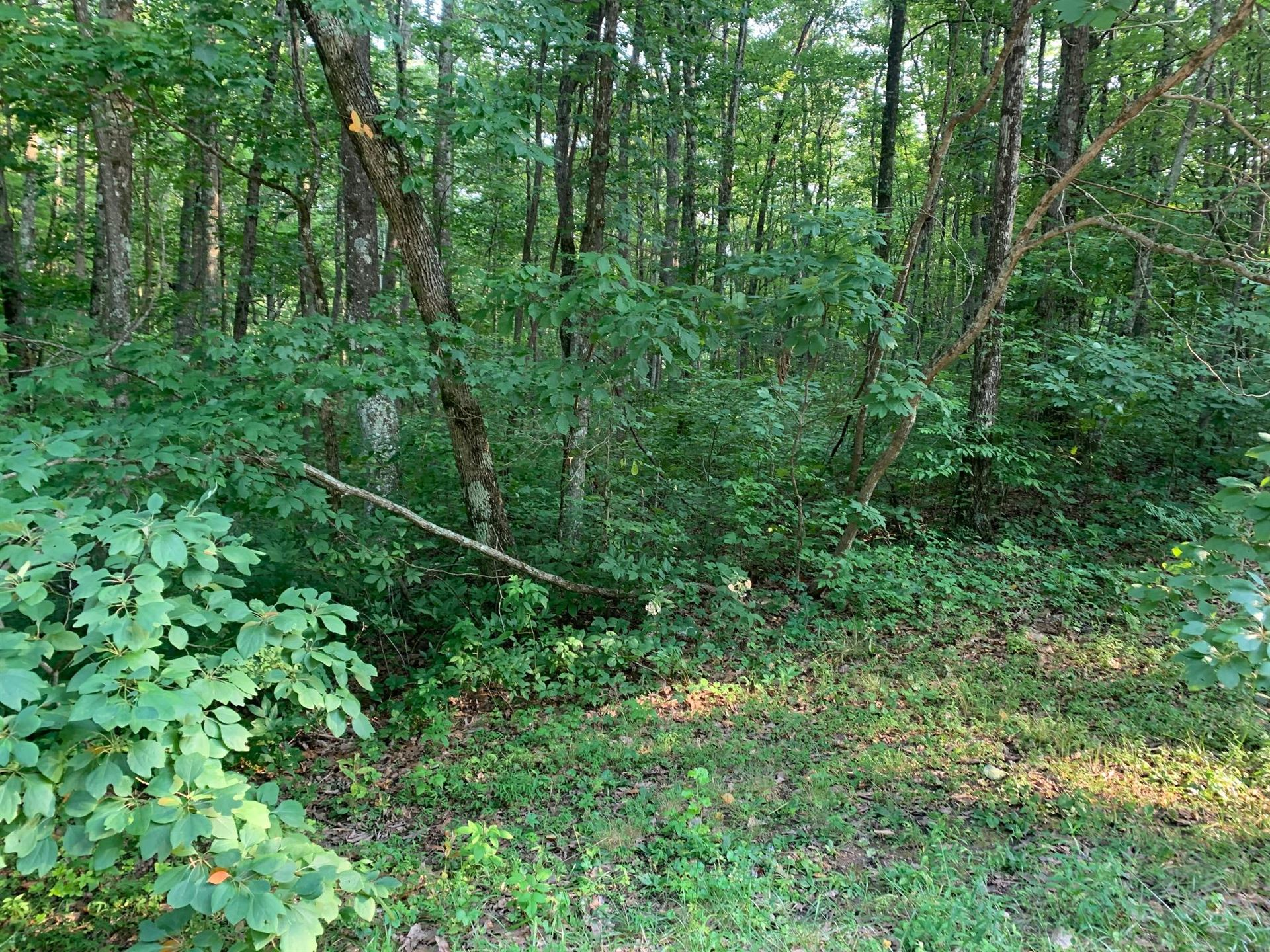 Photo of Renegade Mountain Pkwy, Crab Orchard, TN 37723 (MLS # 1162352)