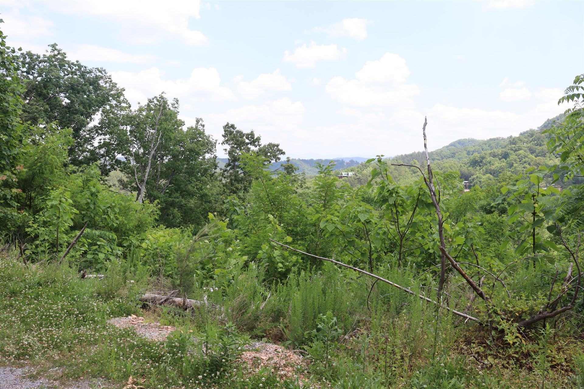 Photo of 3273 Huckleberry Way, Sevierville, TN 37862 (MLS # 1154355)